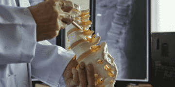 What to Expect at the Chiropractor