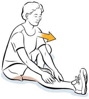 sit and reach hamstring stretch